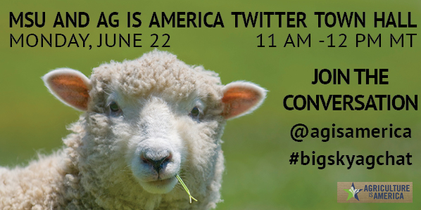 ag-is-america-montana-state-university-twitter-town-hall-bigskyagchat