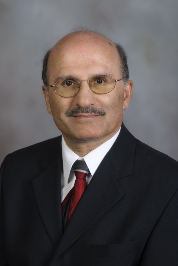 Saied Mostaghimi,  BSE